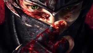Ninja Gaiden 3 Teaser Image