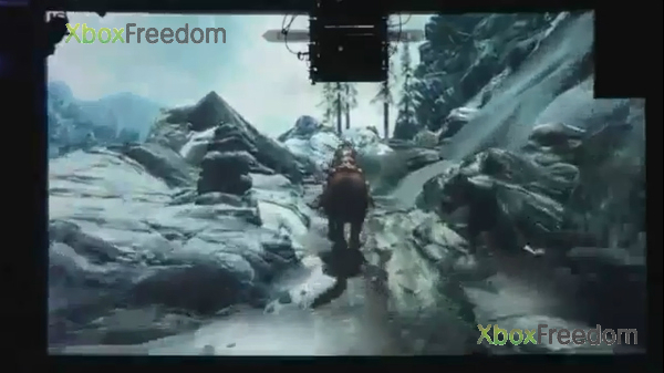 Skyrim leaked 14