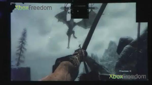 Skyrim leaked 15
