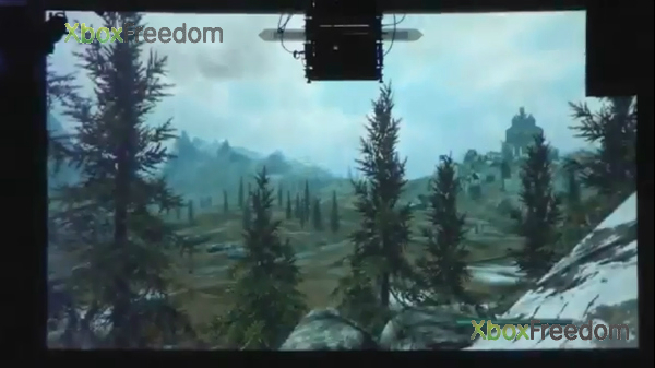 Skyrim leaked 16