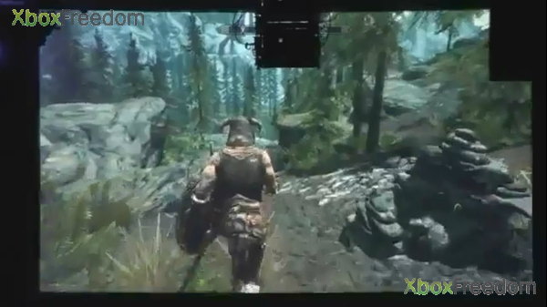 Skyrim leaked 4
