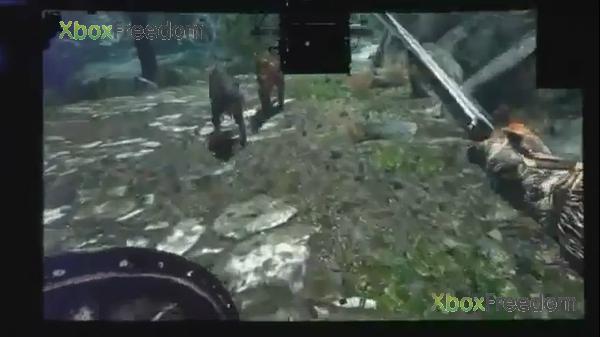 Skyrim leaked 7