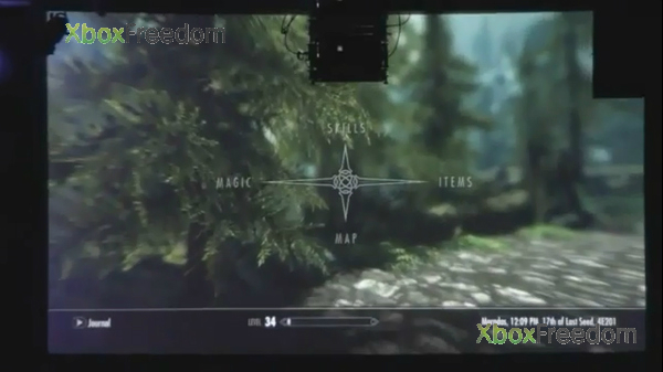 Skyrim leaked 9
